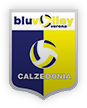 logo calzedonia.png