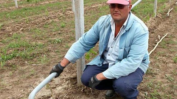 I frutteti nel mirino dei ladri ora rubano spruzzi for Spruzzi irrigazione