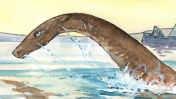 Nuove rivelazioni sul mostro acquatico home l 39 arena for Grosso pesce di lago
