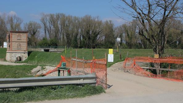 Piante nuove e sentieri al lavoro per il parco s giovanni l - Piscina san giovanni lupatoto ...