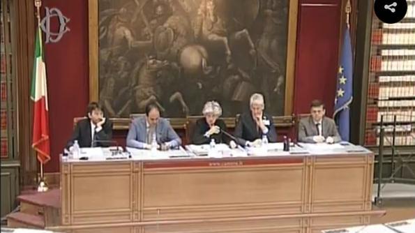 Fondazione arena la crisi della lirica arriva in parlamento for Parlamento in diretta