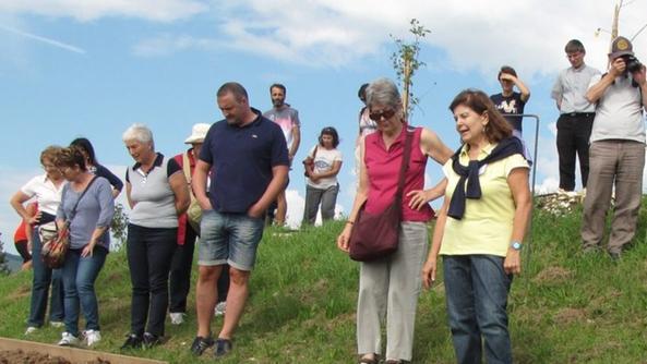 Alla via della rosa i benefici del camminare a piedi for Giardino officinale
