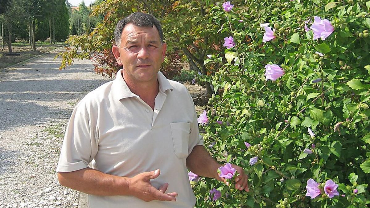 Vivaio Peschiera Del Garda È morto montagnana geniale artista del   bassa