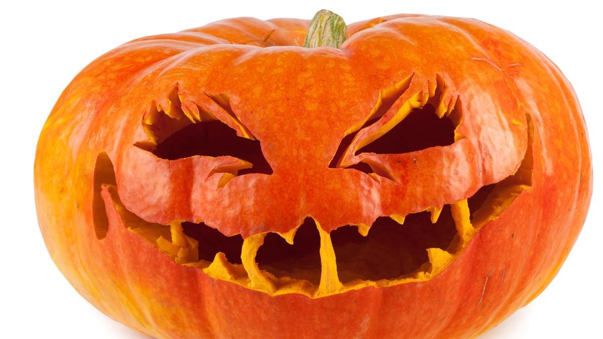 Immagine Zucca Di Halloween 94.Chi La Intaglia Per Halloween E Chi Ci Fa La Birra Prodotti Mercato
